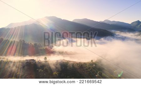 Top view of Tea plantation 2000 and the mist that floated on the mountain at Doi Ang Khang , Chaing Mai, Thailand. Beautiful Landscape , Aerial view