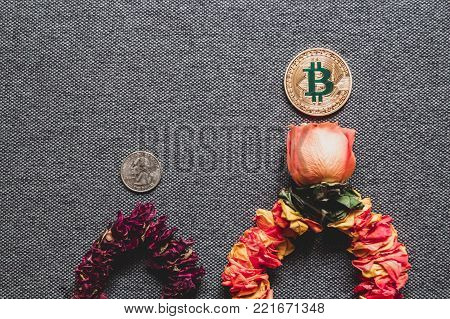 Prosperity of Bitcoin and the death of dollar, concept