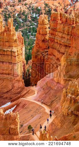 A trail meanders through the colorful red and orange hoodoos of Bryce Canyon National Park in Utah rise majestically from the valley