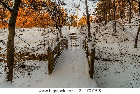 Wintry landscape of wooden footbridge covered with powdery snow in a woodland public park in South Korea