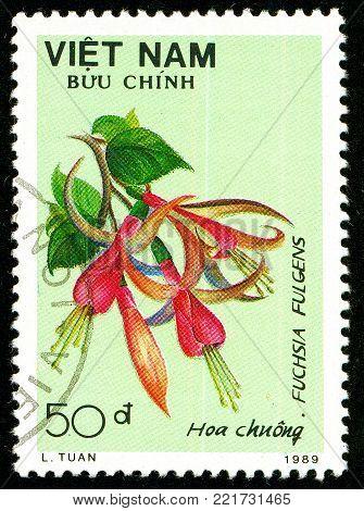 Ukraine - circa 2018: A postage stamp printed in Vietnam shows flower Fuchsia fulgens. Series: Flowers. Circa 1989.