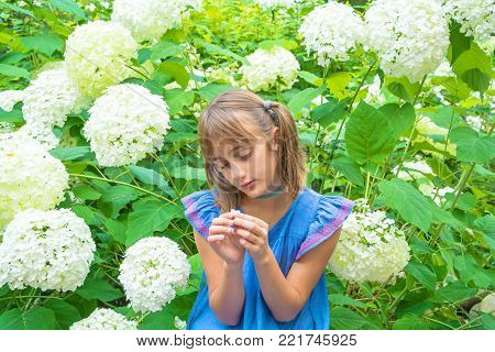Pensive girl with pigtails among white flowers in the garden