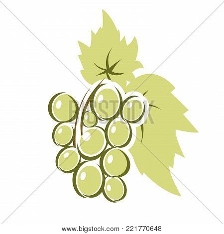 Bunch of grapes with leaves - wine-making concept