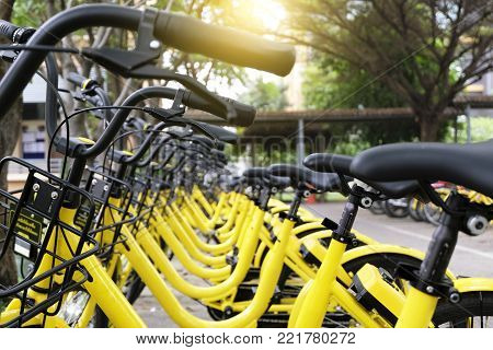 Rows Of Bright Yellow Public Rental Bikes On A Stree