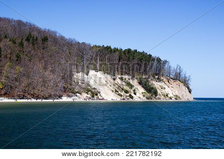The cliff with the sea and the forest, Gdynia orlowo