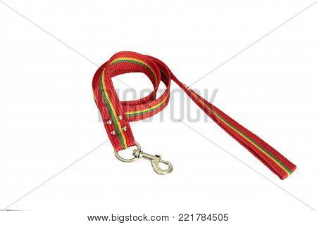 Pet leashes for control or training dog or cat on isolated white