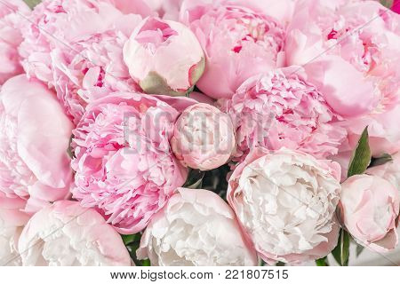 Elegant bouquet of a lot of peonies of pink color close up. Beautiful flower for any holiday. Lots of pretty and romantic flowers in floral shop
