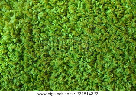 Natural background with soft fluffy green texture.