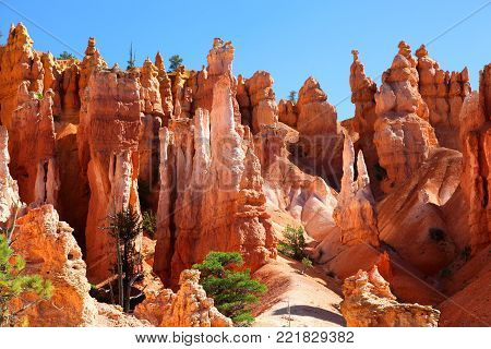 Red soaring hoodoos of Bryce Canyon National Park