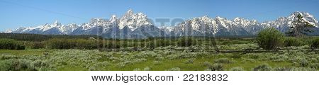 The Grand Tetons Panoramic