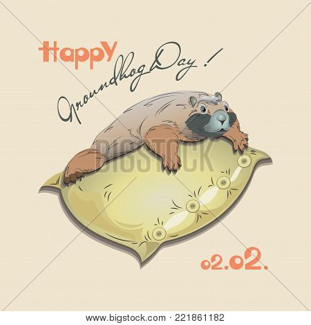 Happy Groundhog Day with a cute marmot on a pillow. Design for a postcard of a banner, poster, printing on fabric or paper.