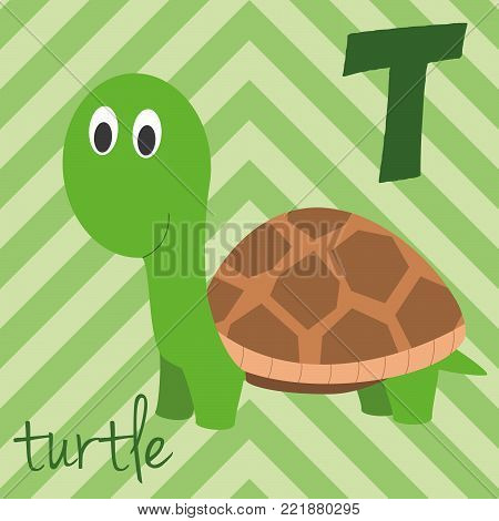 Cute cartoon zoo illustrated alphabet with funny animals: T for Turtle. English alphabet. Learn to read. Isolated Vector illustration.