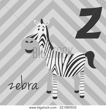 Cute cartoon zoo illustrated alphabet with funny animals: Z for Zebra. English alphabet. Learn to read. Isolated Vector illustration.