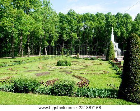 Petergof, Saint Peterburg, Russia - JUNE 12, 2013: Tulips and trees in the park of Peterhof. Russia.