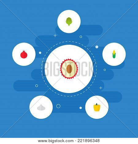 Icons flat style pomegranate, corn, lychee and other vector elements. Set of berry icons flat style symbols also includes fruit, cereal, artichoke objects.