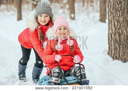 small children 5 and 10 years of age sledging in the winter in the woods