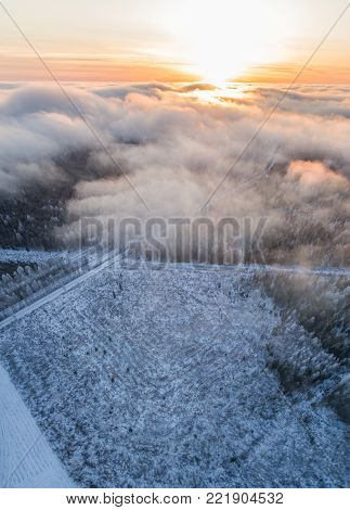 Aerial view of forest covered in fog mist. Epic aerial winter scene.