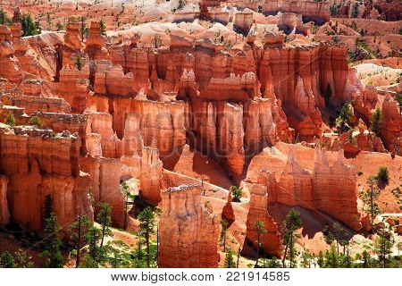 Pink, red and orange hoodoos of Bryce Canyon National Park