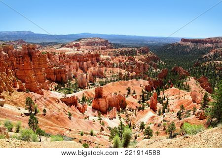 Red hoodoo and pine tree landscape of Bryce Canyon National Park