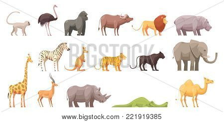 Wild animals retro cartoon collection of flat isolated jungle and african beast images on blank background vector illustration