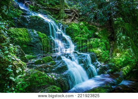 Beautiful Buttermilk Falls ib scenic Stokes State Forest in Northern New Jersey.