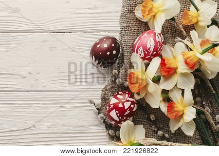 modern easter flat lay. stylish colorful easter eggs with spring flowers daffodils on rustic white wooden background top view. space for text. stylish painted eggs. greeting card