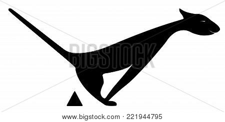 Cat to defecate on a white background. Vector illustration.