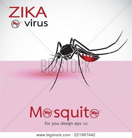 Mosquito Sucking Blood On Skin. Spread of zika and dengue virus. Stop Dengue fever with Mosquito. Zika Virus Outbreak. Easy editable layered vector illustration.