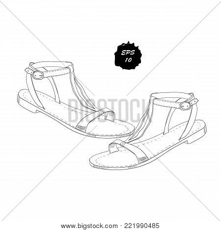 658f2d981738e Vector illustration of isolated objects sandal shoes. Drawing graphic  design for woman, girl and