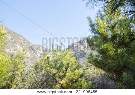 The sunny mountains of China. Beautiful vista of mountain hills. Mountains in a blue fog.