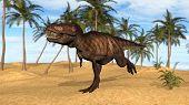 tyrannosaurus in desert poster