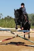 training of competition in jumping for a teen and her black horse poster