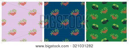 Seamless Pattern. Vector Berries. Mountain Ash, Rowan, Viburnum And Black Chokeberry. Natural Fashio