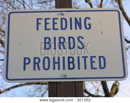 No Feeding Birds Sign