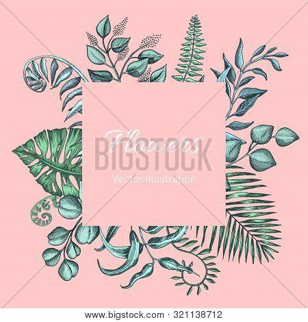 Hand Drawn Wedding Illustration Eucalyptus, Succulent Flowers.
