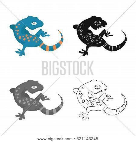 Vector Illustration Of Gecko And Lizard Symbol. Collection Of Gecko And Cute Stock Vector Illustrati