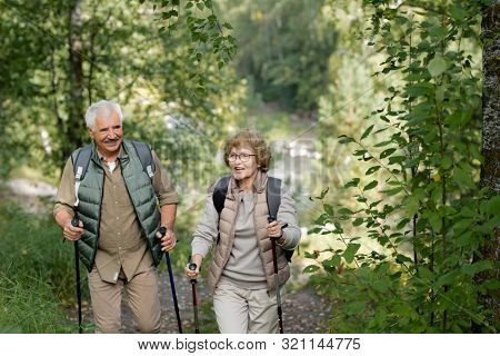 Cheerful mature active couple enjoying trekking in the forest or park while moving between bushes