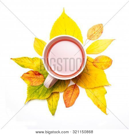 Autumn Composition. Cup Of Tea, Green Tea, Black Tea, Fruit And Herbal, Tea, Turmeric, Ginger With A