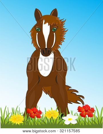 Beautiful Sulfuric Horse On Glade With Flower