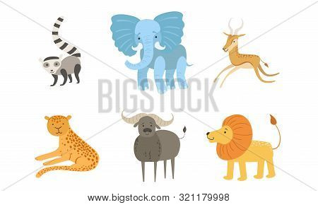 Cute African Animals Set, Raccoon, Elephant, Antelope, Tiger, Lion, Mountain, Sheep Vector Illustrat