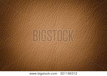 Light Brown Leather Texture Background With Pattern, Closeup. Reptile Skin. Beige Skin Of A Crocodil
