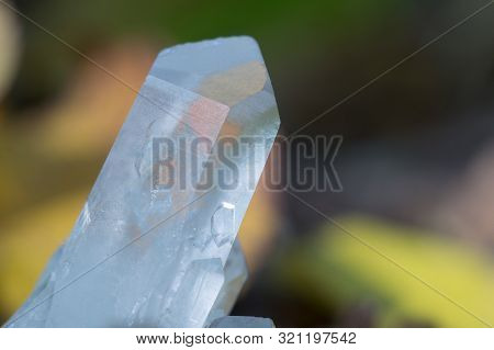 Quartz Crystal On The Background Of Autumn Foliage. Beautiful Gem Chalcedony