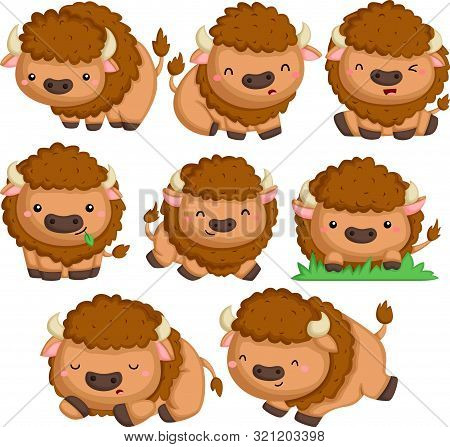A Vector Of Many Bison In Many Poses