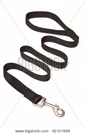 Dog lead isolated on a white studio background. poster