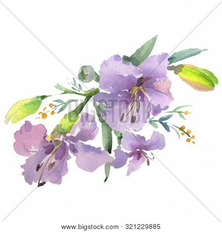 Bouquet Floral Botanical Flowers. Watercolor Background Illustration Set. Isolated Bouquets Illustra
