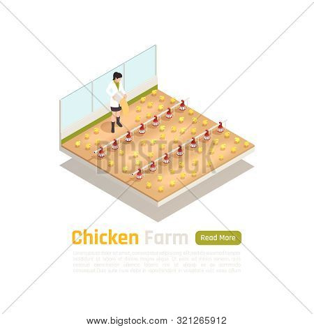 Broiler Poultry Stock Production Isometric Composition With Modern Newly Hatched Chicks Breeder Tech