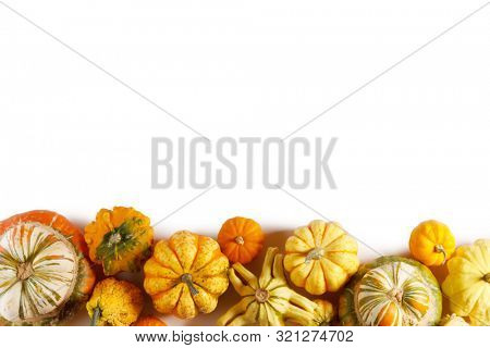 Assortiment of autumn harvested pumpkins in a heap isolated on white background , Halloween holiday concept , border frame stripe design element with copy space for text