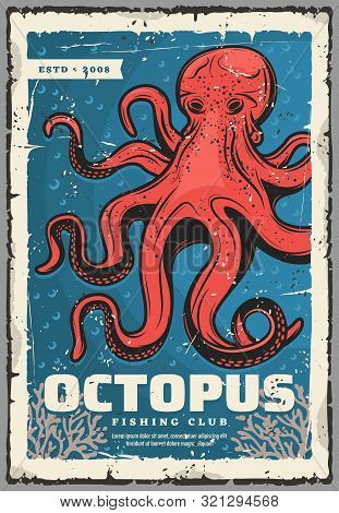 Red Octopus, Underwater Animal. Vector Animal With Tentacles, Sea Monster And Evil Kraken. Ocean Mol