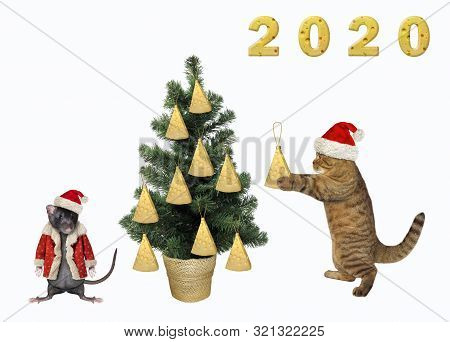 The Cat In A Santa Claus Hat Is Decorating The Christmas Tree With Pieces Of Cheese. The Pet Rat In