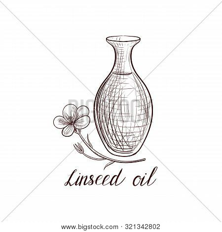 Vector Drawing Linseed Oil, Bottle Of Flax Seed Oil And , Hand Drawn Illustration